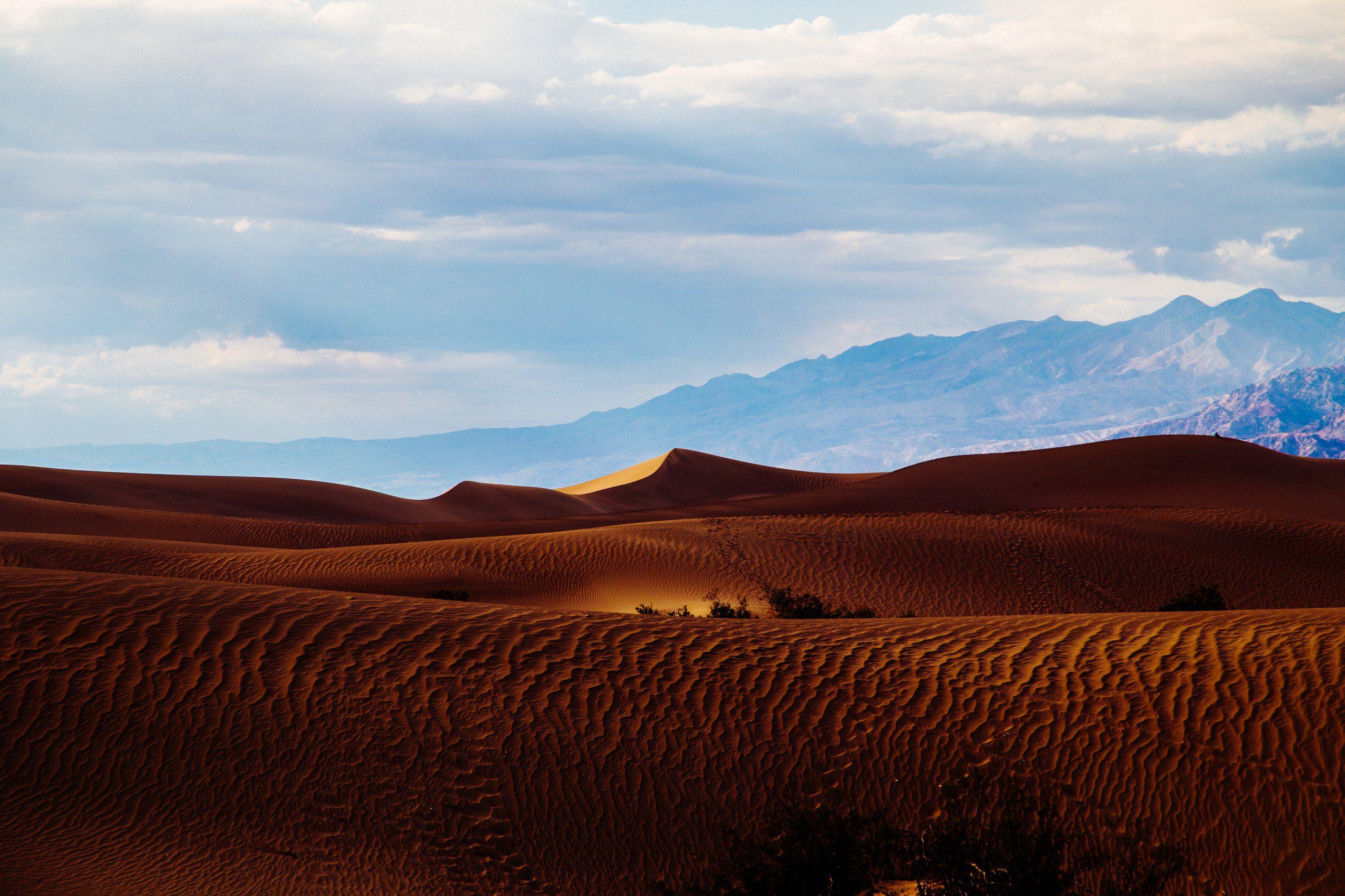 desert-dunes-roadtrip-029